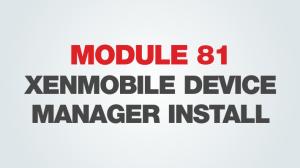 module81